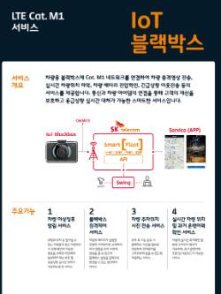 """""""SK텔레콤, 사물인터넷 기반의 블랙박스와 혈당측정기 준비"""