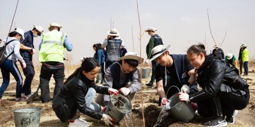 """""""대한항공, 몽골 사막화지역에 나무심기 등 세계에서 사회공헌활동"""