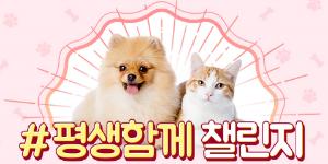 """""""삼성카드, 동영상 플랫폼 '틱톡'과  반려동물 보호문화 확산 캠페인"""