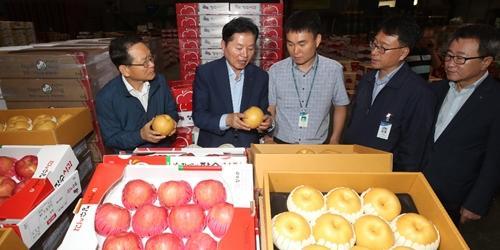 김병원, 추석 앞두고 농협 공판장 찾아 농산물 수급상황 점검