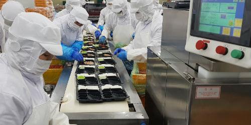 """GS25 협력사 제이비프레시, 제주에 신선식품 공급하는 새 공장 열어"