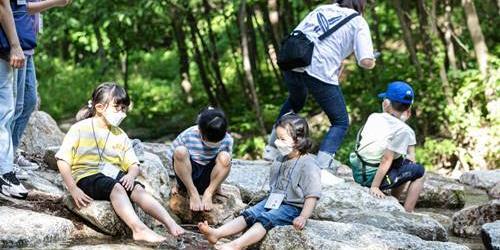 현대차정몽구재단, 코로나19로 미뤘던 '온드림 숲 속 힐링교실' 진행