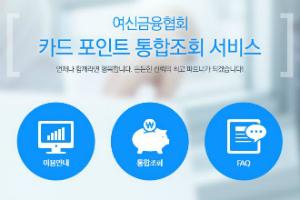 """""""금융위, 앱 통한 카드포인트 현금화 서비스를 적극행정 우수사례로 꼽아"""