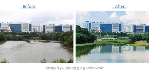 """""""삼성디스플레이 친환경 생태식물섬 조성, """"자연생태계 보호에 앞장"""""""